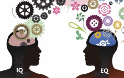 אינטיליגנציה רגשית כמקדמת הדרכה